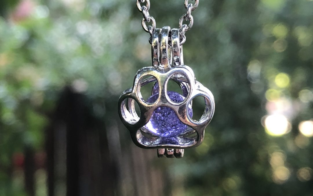 New Paw Locket – Now Available